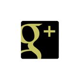 google-icon-fotoroemmel